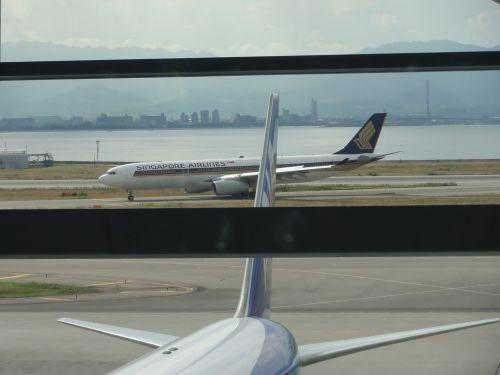 シンガポール航空 A330