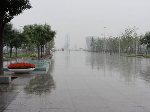 雨のオリンピック公園