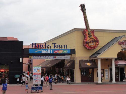 Hawks Town