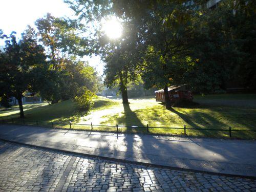 公園みたいです。