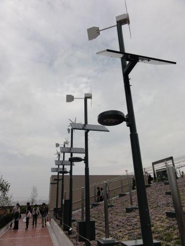 風力 太陽光 発電